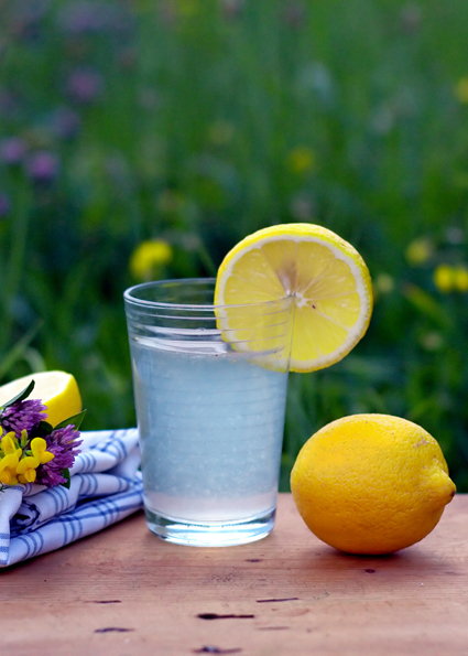 Lemons_Gordana Heilkraft der Zitrone
