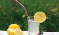 Heilkraft der Zitrone