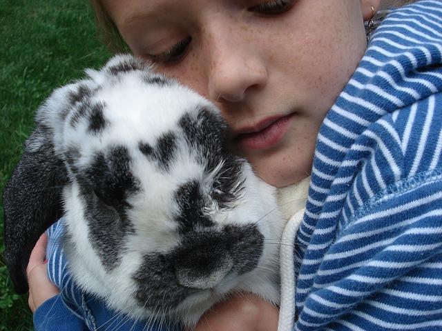 kind kaninchen
