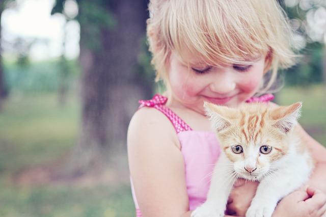 Katze Kind