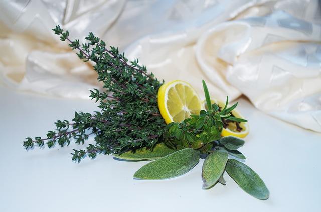 Husten, herbs-1061631_640