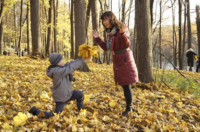 Erziehung mit Spaß , mother-and-son-864142_640