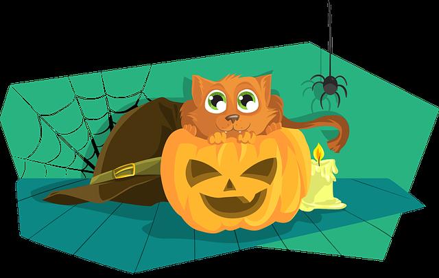 Halloween cat-1456173_640