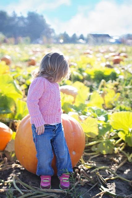 Halloween giant-pumpkins-955603_640