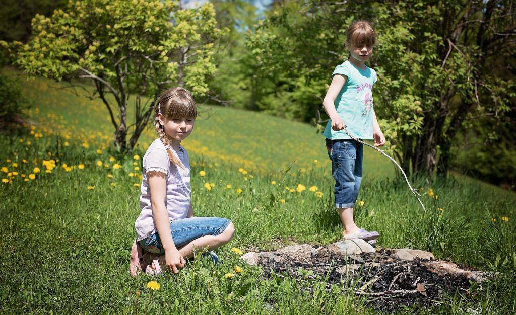 Wildkräuter sammeln mit Kindern