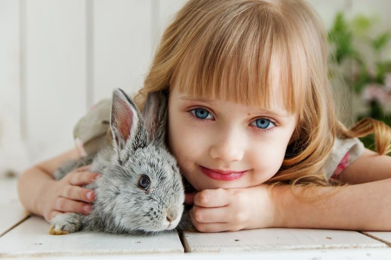 Tierschutz im Schulalltag