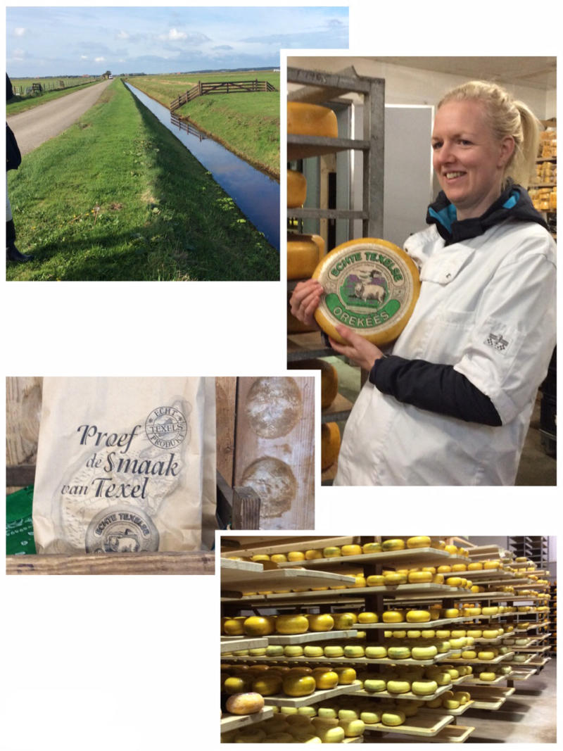 Texel – Käsebauernhof Wezenspyk