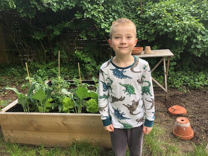 Gärtnern mit Kindern - Junge und Hochbeete